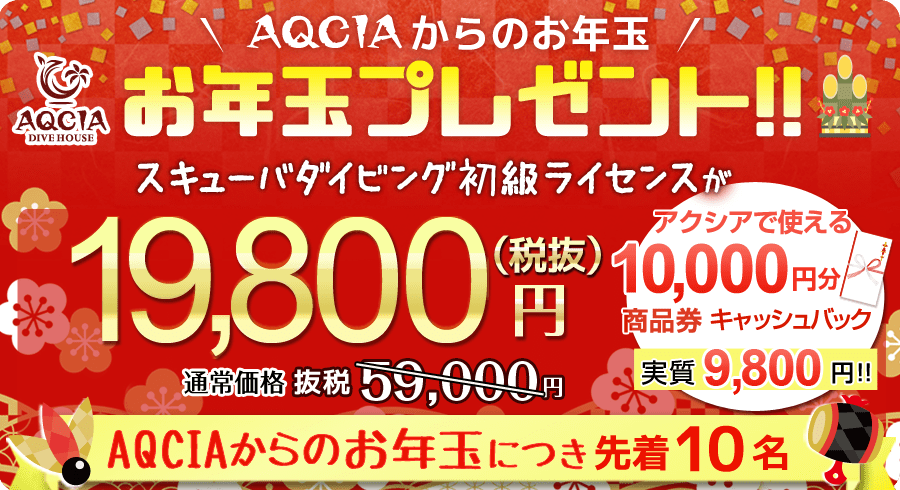 AQCIAからのお年玉プレゼント!スキューバダイビング初級ライセンスが 19,800円 先着10名様