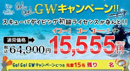 Go!Go!GWキャンペーン スキューバダイビング初級ライセンスが 15,555円  先着15名様