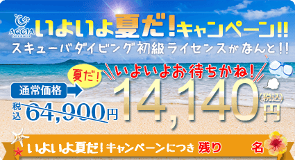 スキューバダイビング初級ライセンスが 14,140円  先着15名様